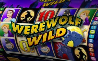 Aristocrat video poker machine Werewolf Wild